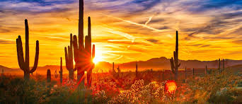 image shows Arizona scenic views