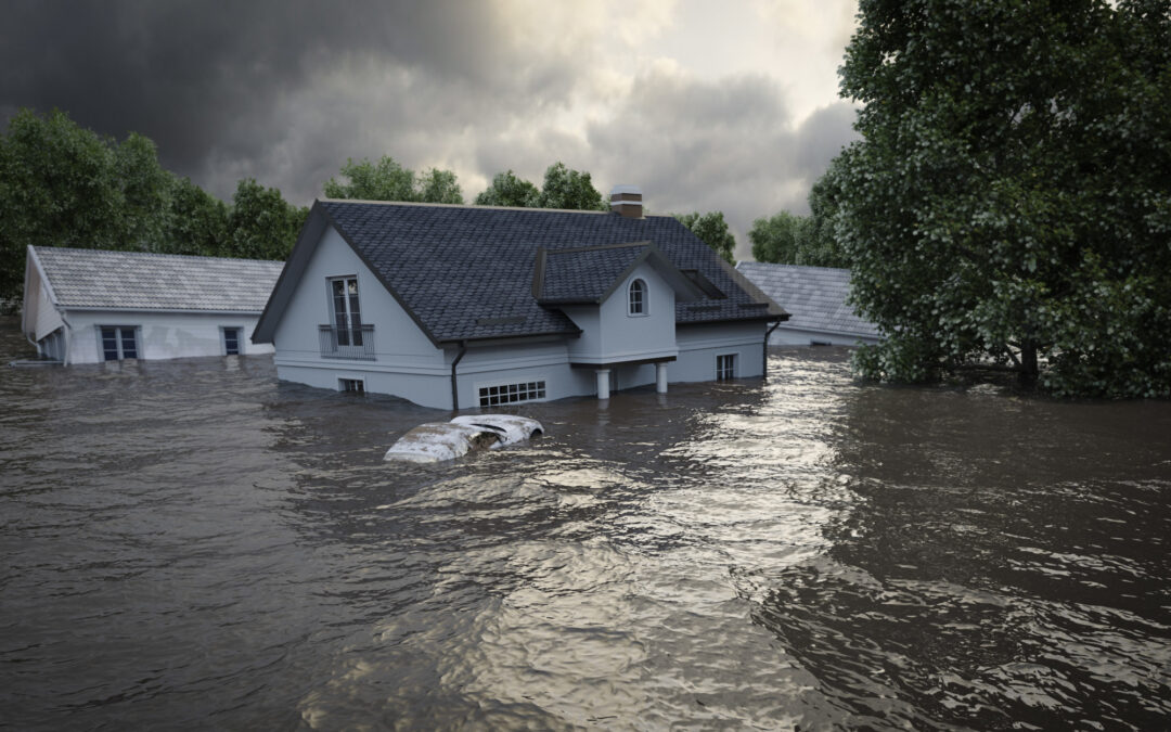Helpful Tips for New Homeowners to Prepare for Natural Disasters